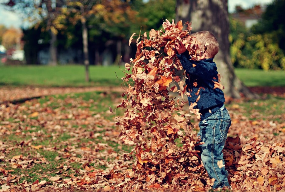 5 Fun Ideas to Get the Kids Outdoors this Autumn
